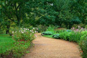 Arboriculture and Horticulture