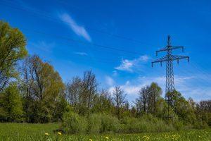 Certificate II in ESI - Powerline vegetation control