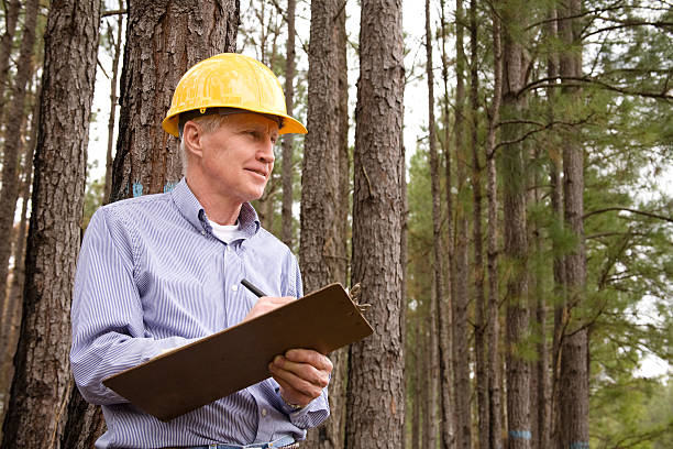 Become a Consulting Arborist with Interlink Training